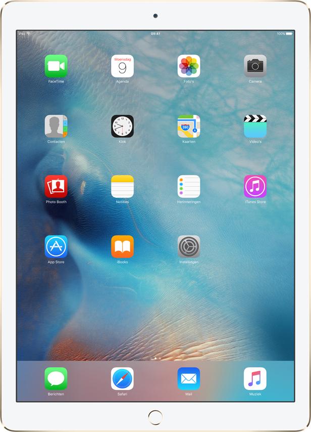 Apple iPad Pro 256GB Gold (Gold)