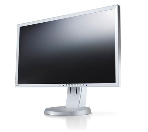 Eizo EV2416WFS-GY LED display (Grau)