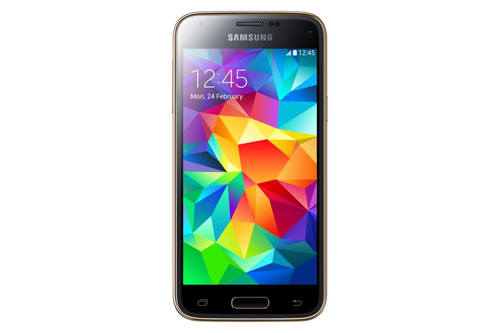 Samsung Galaxy S5 mini SM-G800F 16GB 4G Gold (Gold)