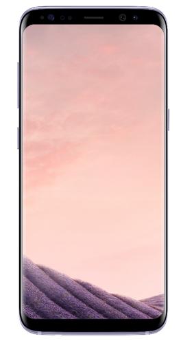 Samsung Galaxy S8 SM-G950F 4G 64GB Grau Smartphone (Grau)