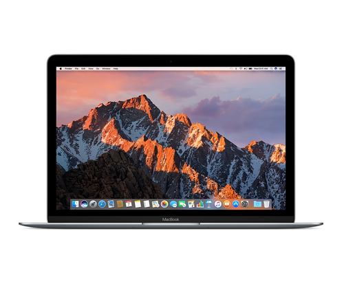 Apple MacBook 1.3GHz 12Zoll 2304 x 1440Pixel Grau Notebook (Grau)