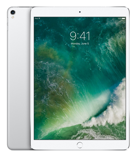 Apple iPad Pro 256GB Silber Tablet (Silber)
