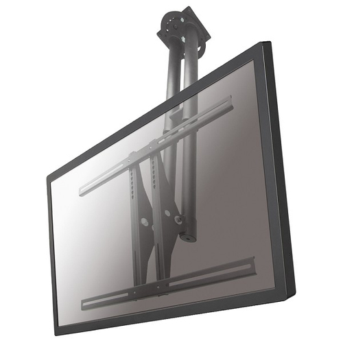 Newstar PLASMA-C100 Flat Panel-Deckenhalter (Silber)