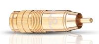 OEHLBACH CJG 66 RCA M (Gold)