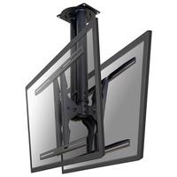 Newstar LCD/LED/Plasma-Deckenshalterung (Schwarz)