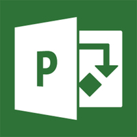 Microsoft Project 2013 Professional, x32/64, 1u, ENG