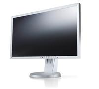 Eizo EV2416WFS-GY LED display (Grau)