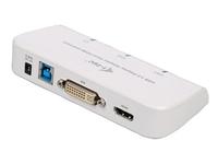 iTEC U3DUALADA Video-Konverter (Weiß)