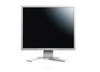 Eizo S2133-GY PC Flachbildschirm (Grau)