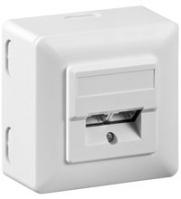 Wentronic 50943 Flat Panel Wandhalter (Weiß)