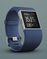 Fitbit Surge (Silber)