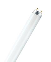 Osram Lumilux T8 18W G13 A Himmel weiß Leuchtstofflampe