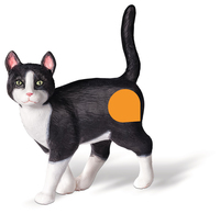 Ravensburger Katze (Mehrfarbig)