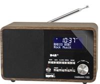 Telestar DABMAN 100 (Schwarz)