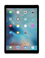 Apple iPad Pro 128GB Grau (Grau)