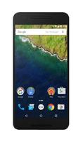 Huawei Nexus 6P 64GB 4G Grau (Grau)