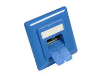 Alcasa GC-N0051B RJ-45 Telefon-/Antennen-/Steckdose (Blau)