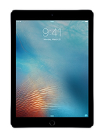 Apple iPad Pro 32GB 3G 4G Grau (Grau)