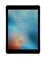 Apple iPad Pro 256GB 3G 4G Grau (Grau)