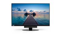 Lenovo ThinkCentre Tiny-in-One 24 23.8Zoll Full HD IPS Matt Schwarz Computerbildschirm (Schwarz)