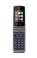 Beafon C240 2.4Zoll 118g Champagner Einsteigertelefon (Champagner)