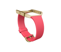 Fitbit FB159ABGPKS Gold,Pink Fitnessarmband (Gold, Pink)