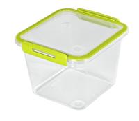 Rotho Memory Rechteckig Box 1.6l Grün 1Stück(e) (Grün, Transparent)
