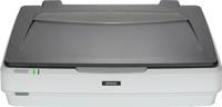 Epson Expression 12000XL Flachbettscanner 2400 x 4800DPI A3 Grau, Weiß (Grau, Weiß)