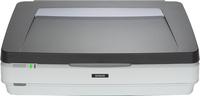 Epson EXPRESSION 12000XL PRO 2400 x 4800DPI A3 Grau, Weiß (Grau, Weiß)