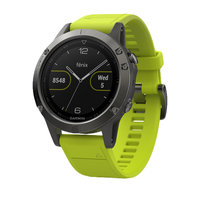 Garmin fēnix 5 Bluetooth Grau Sportuhr (Grau)