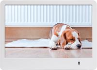 Rollei Pissarro DPF-86 8Zoll Digitaler Bilderrahmen (Weiß)