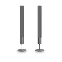 LOEWE Klang 5 135W Grau Lautsprecher (Grau)