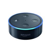 Amazon 841667112329 Stereo portable speaker Schwarz Tragbarer Lautsprecher (Schwarz)