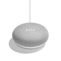 Google Home Mini Grau (Grau)