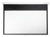 Optoma DS-9084PMG+ Projektoren Leinwand (Weiß)