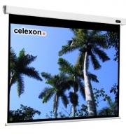 Celexon 1090095 Projektoren Leinwand (Schwarz, Weiß)