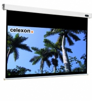 Celexon 1090104 Projektoren Leinwand (Schwarz, Weiß)