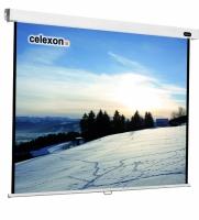 Celexon 1090044 Projektoren Leinwand (Schwarz, Weiß)