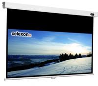 Celexon 1090058 Projektoren Leinwand (Schwarz, Weiß)