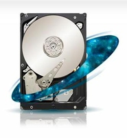 Seagate Constellation ST33000651SS