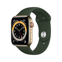 Apple Watch Series 6 44 mm OLED 4G Gold GPS