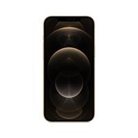 Apple iPhone 12 Pro Max 17 cm (6.7 Zoll) Dual-SIM iOS 14 5G 128 GB Gold (Gold)