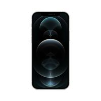 Apple iPhone 12 Pro 15,5 cm (6.1 Zoll) Dual-SIM iOS 14 5G 256 GB Silber (Silber)