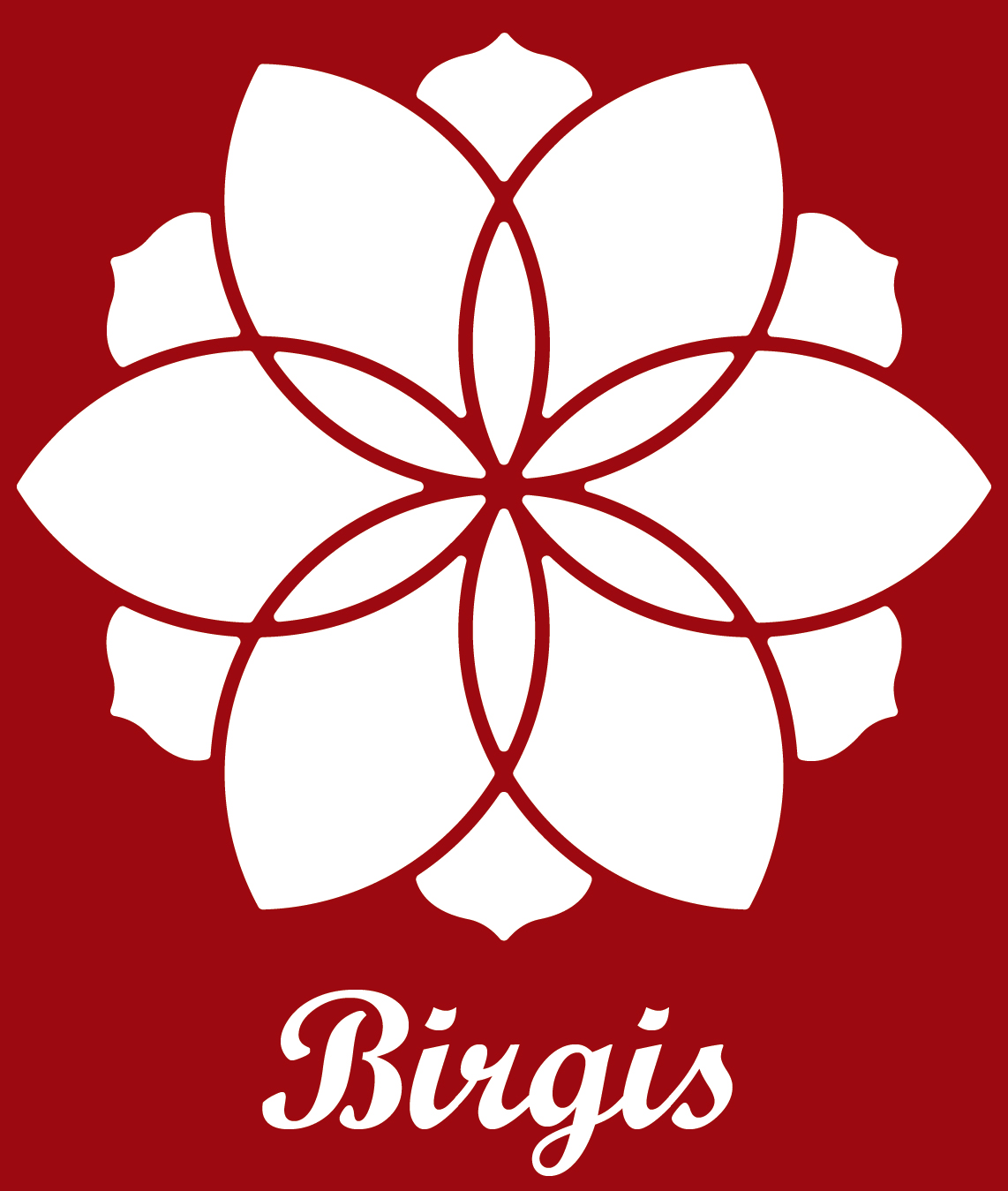 Birgis
