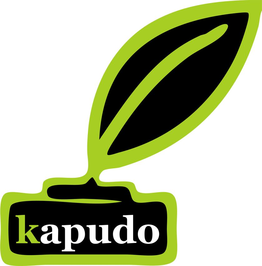 kapudo IT-Studio in Krefeld