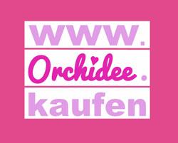 Orchidee.kaufen