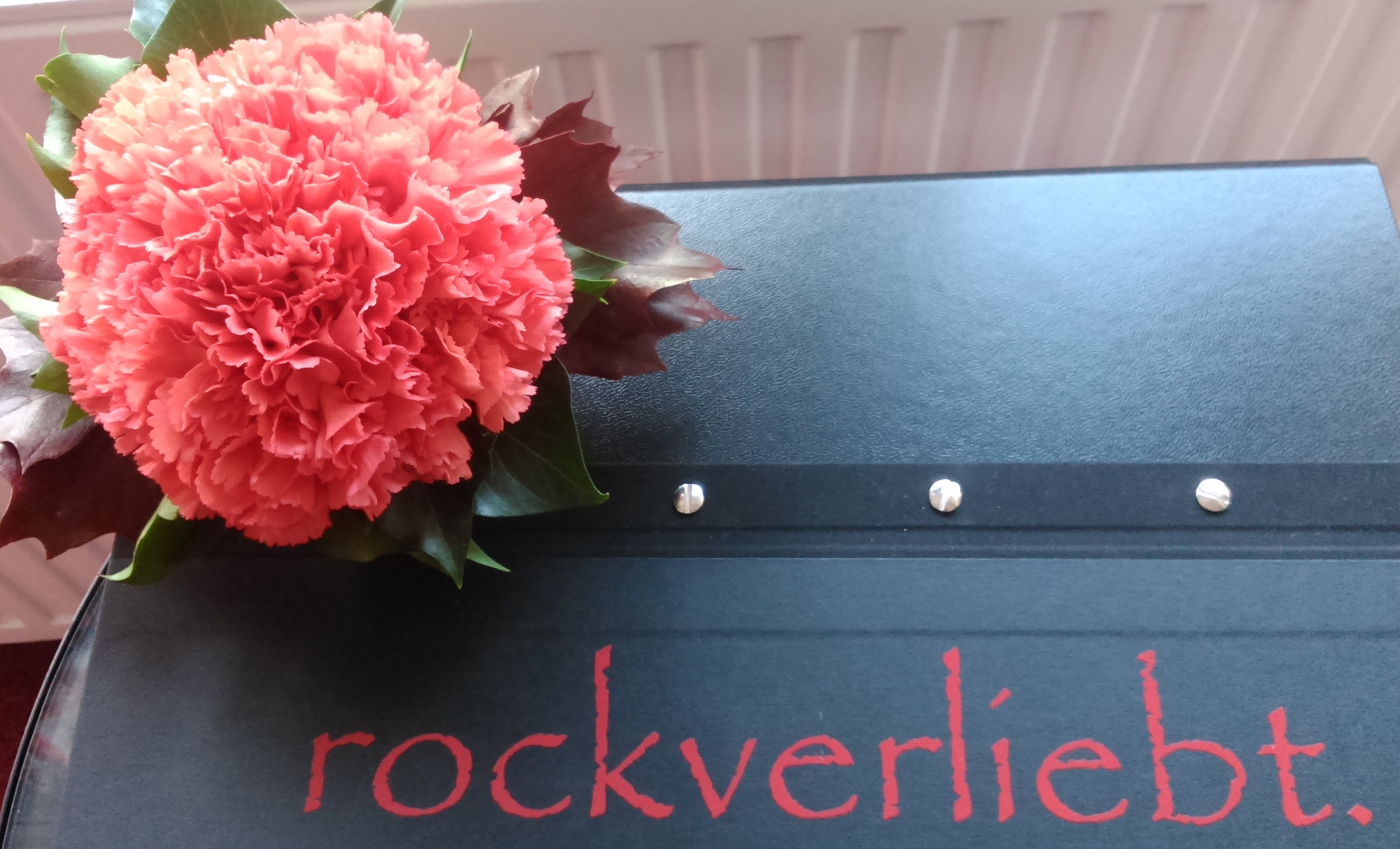Rockverliebt